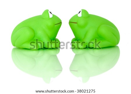 A frog couple look into each other eyes, reflectiong on their lives. Isolated on white and shot on glass for reflection and to enhance the scene.