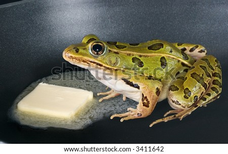 A frog is sitting in a frying pan while some butter melts next to him. - stock photo