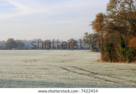 A frost covered field on a cold english morning, with autumn colours in the trees and a cold sky.