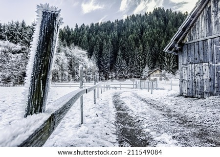 a frosty rural footpath with a wooden fence covered in hoarfrost and some cabins in the woods - stock photo