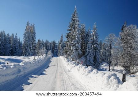 A frozen road in the swiss alps, Lake Joux, Canton Vaud, Switzerland - stock photo
