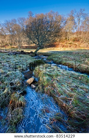 A frozen stream in a frosty field in rural Perthshire, Scotland, on a bright sunny winter afternoon.