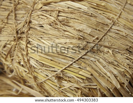 A full page of bound straw bale background texture