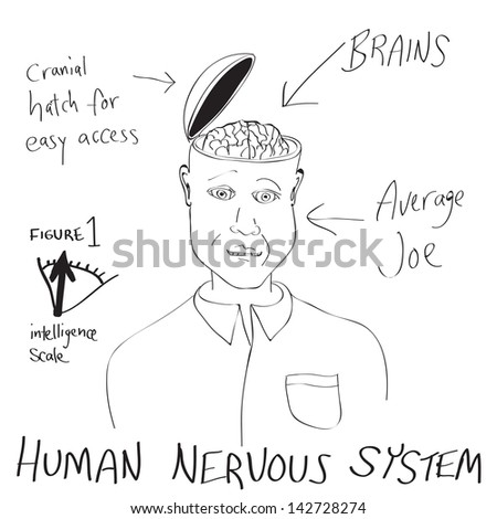 A funny cartoon diagram of a man with his head opening up revealing his brain. - stock photo