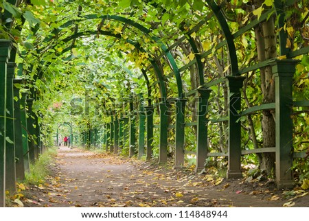 a garden tunnel in Peterhof palace, St Petersburg, Russia - stock photo