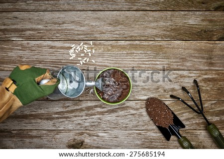 a gardener planting and watering seeds - stock photo
