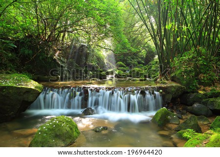 A gently-flowing forest stream drops down a small waterfall. - stock photo