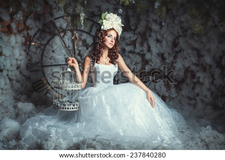 A girl sits in the winter forest in a beautiful lush dress, she keeps the bird cage. - stock photo