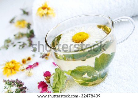 A glass cap of camomile-mint warm herbal tea, arranged by dried herbs and flowers using as alternative treatments in folk medicine, closeup, blur background - stock photo