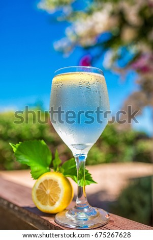 A glass of water with Tropic villa on the nature.