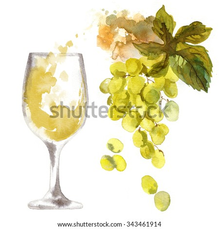 A glass of white wine and a bunch of green grapes on a white background. Study watercolor. Naive food, outline colors on paper. - stock photo