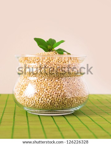 A glass pot filled with quinoa seeds with basil leaf on top - stock photo