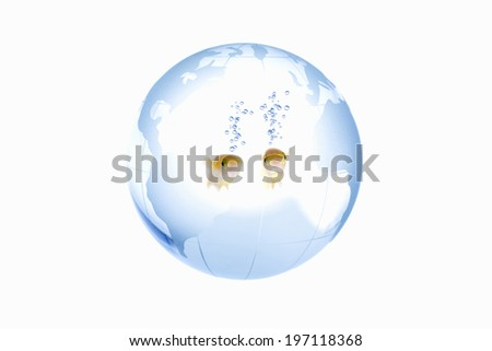 A Globe And A Ricefish