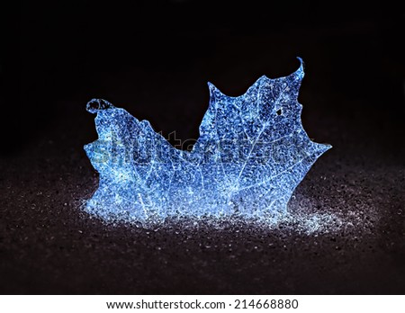 A glowing blue frozen ice maple leaf half buried in snow and ice pellets.  - stock photo