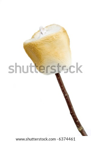 A golden brown, toasted marshmallow on a stick. Isolated with clipping path.
