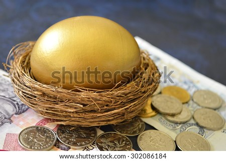 A golden egg in nest surrounded by banknotes and coins - stock photo
