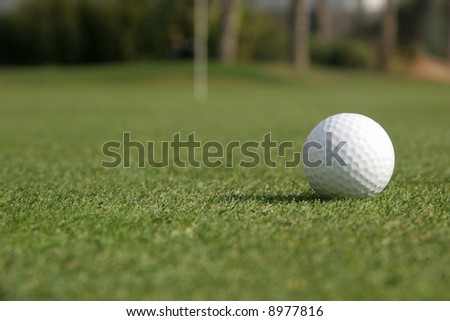 A golf ball is lying on the green