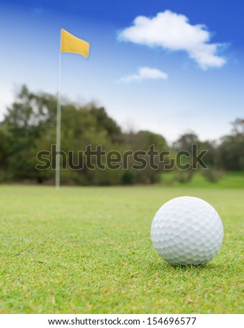 A golf ball on a green with the flag in the background