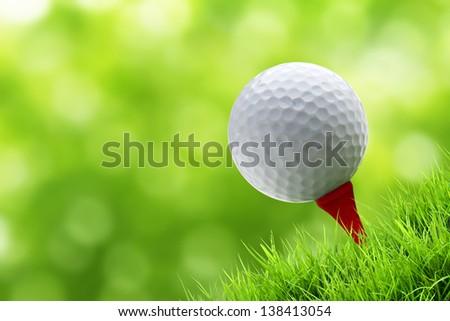 a golf ball on tee on green bury background - stock photo