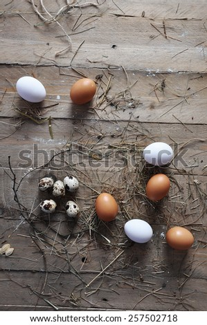 A goose egg, hen egg and a quail egg  on a wooden background - stock photo