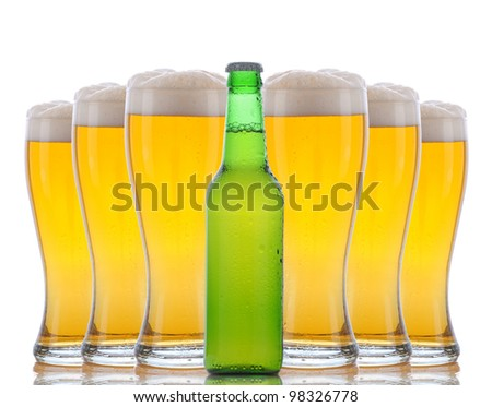 A green beer bottle standing in front of six cold frosty glasses with foamy tops. Horizontal format over white with reflections. - stock photo