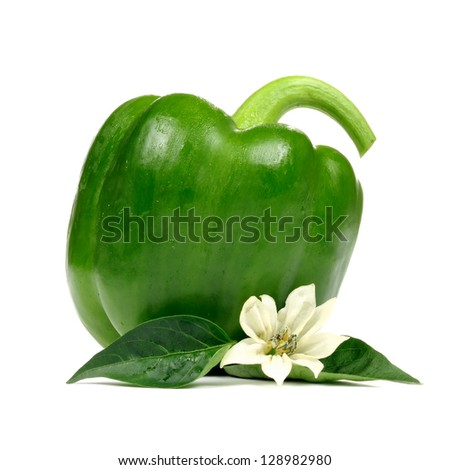 A green bell pepper with leaves and flower isolated on a white background �¢?? square image - stock photo