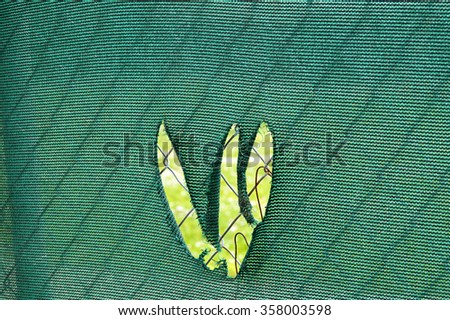 A green chain link fence covering with a tear that looks like it was made with claws. - stock photo