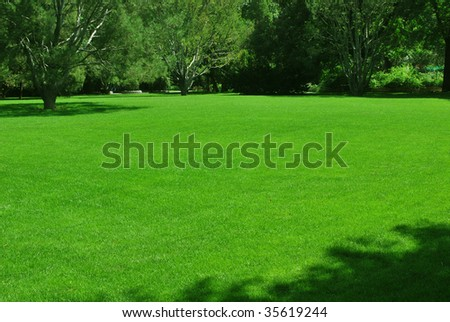 A green meadow in a park, ideal place for a party. - stock photo