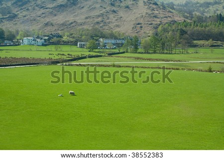 a green pasture in the english lake district national park