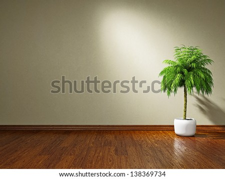 A  green plant near the plastered wall - stock photo