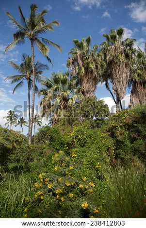 a green space with flowers and palm trees and blue sky in the background