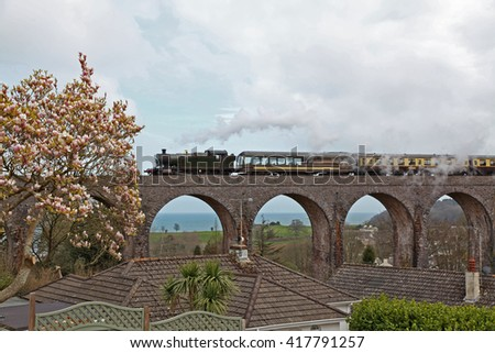A green steam train with brown and cream coloured coaches passes over the many arches of a viaduct on the South Devon coast with a Magnolia tree in full bloom in the foreground
