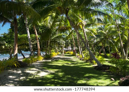A green walking path at a south pacific tropical resort shows a shaded, grassy walkway to a local bure. - stock photo