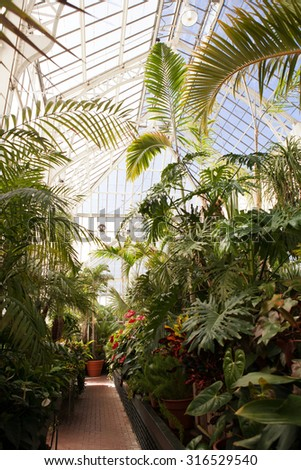 a greenhouse that holds different types of plants, interior - stock photo