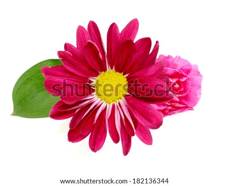 A greeting flowers bouquet - stock photo