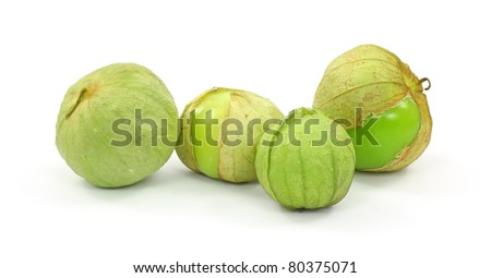 A group of four ripening tomatillos fruit.