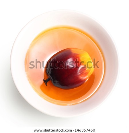 A group of oil palm fruit on the white background - stock photo