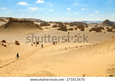 A group of people in a hiking trip in the desert of Fayoum, Egypt