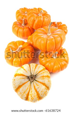 A group of pumpkins on a white surface.
