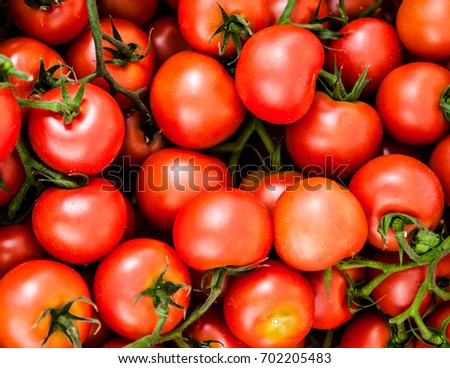 A Group of red tomatoes.