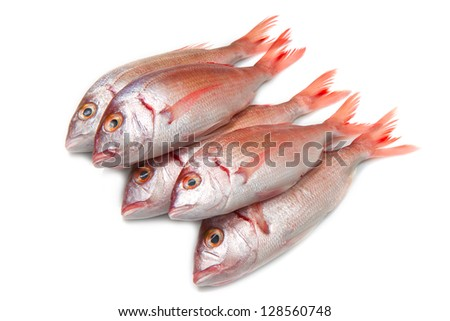 a group of sea bream on white - stock photo