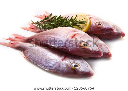 a group of sea bream with lemon and rosemary on white - stock photo