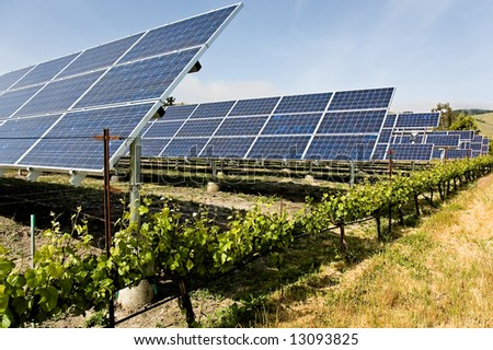 A group of solar panels that are powering the machinery of a California vinyard, reducing the carbon footprint