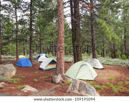 A group of tents in a forest - stock photo