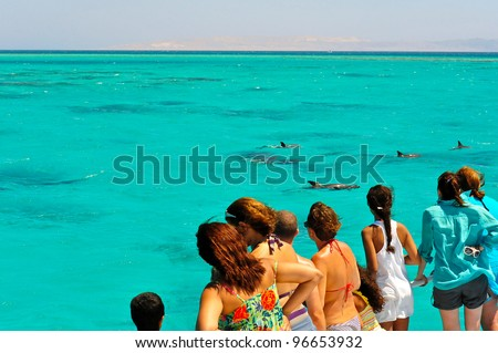 A group of tourist, on a one-day marine excursion, gather on the boat deck to curiously watch a pod of dolphins as they swim in the blue turquoise waters of the Red Sea, Egypt - stock photo