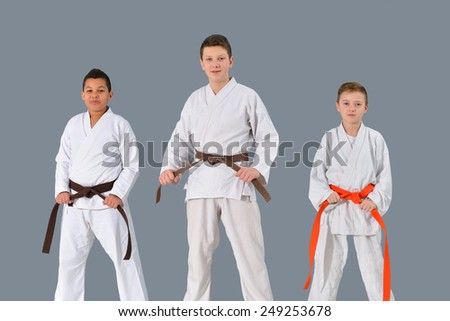 a group of young, successful and beautiful karate show knowledge - stock photo