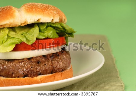 A hamburger with onions, lettuce and tomato