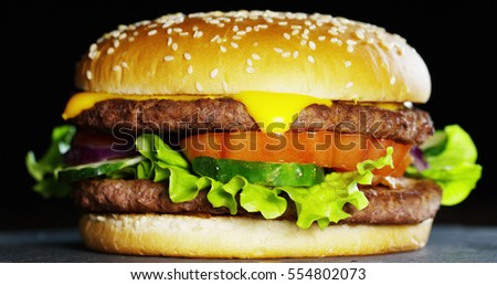 A hamburger with onions, tomatoes and parmesan salad and sauces that give flavor served with or without fries. The hamburger is a typical American food, a food to fast food. Concept:fast food,obesity