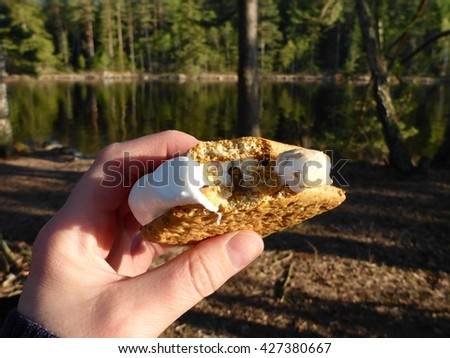 A hand holding a smores in the woods