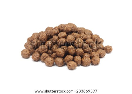 a handful of oatmeal chocolate covered balls on a white background